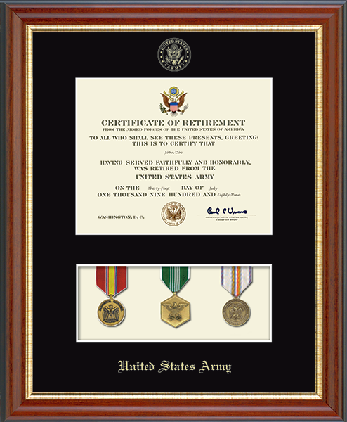 Medal Display Certificate Frame in Newport