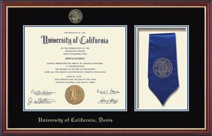 Commemorative Sash Diploma Frame in Newport