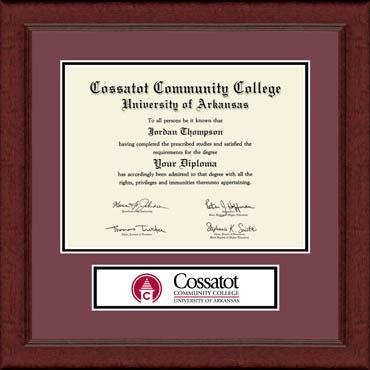 Lasting Memories Banner Edition Diploma Frame in Sierra