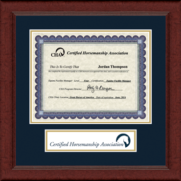 Lasting Memories Banner Seal Certificate Frame in Sierra