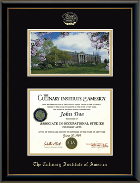 Campus Scene Diploma Frame in Onexa Gold