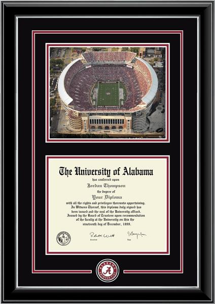 Spirit Medallion Stadium Scene Diploma Frame in Onyx Silver