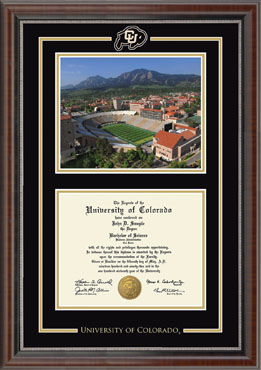 Spirit Medallion Stadium Scene Diploma Frame in Chateau