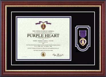 Purple Heart Certificate & Commemorative Medal Frame in Newport