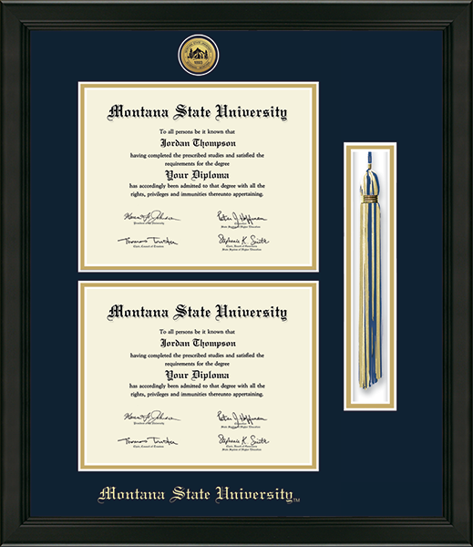 Gold Engraved Tassel Double Diploma Frame in Omega