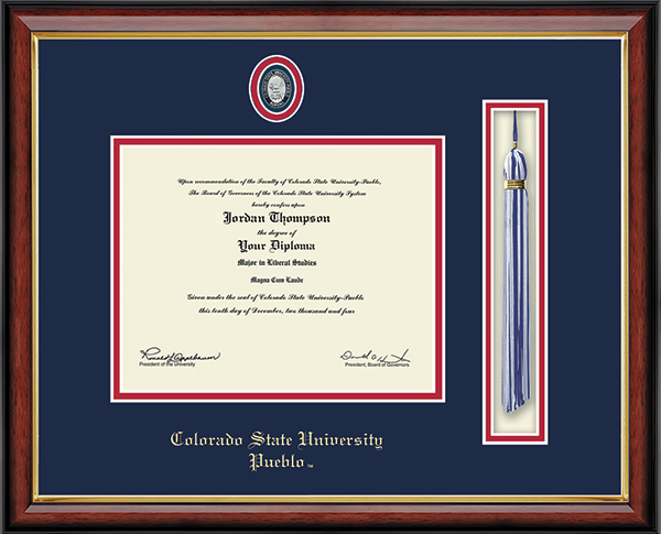 Nursing Pin Tassel Edition Diploma Frame in Southport Gold