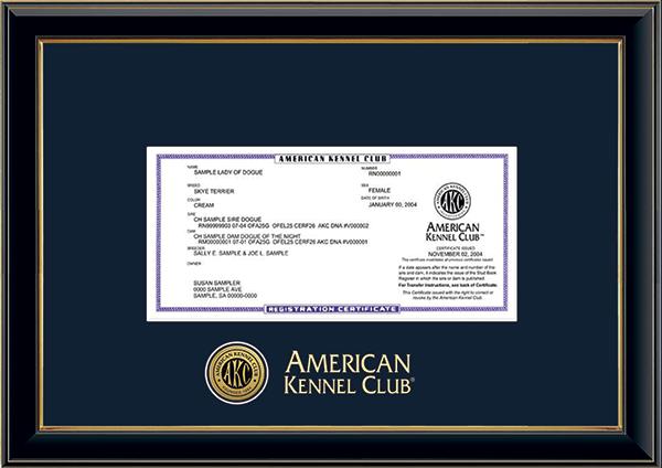 Engraved Medallion Registration Frame in Onexa Gold