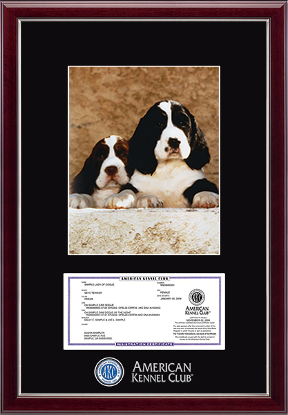 "Masterpiece Medallion Registration & 8"" x 10"" Photo Frame in Gallery Silver"