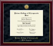 Gold Engraved Medallion Diploma Frame in Gallery