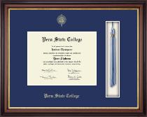 Tassel Edition Diploma Frame in Regency Gold