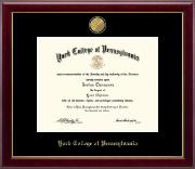 23K Medallion Diploma Frame in Gallery