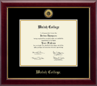Gold Engraved Diploma Frame in Gallery