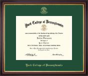 Gold Embossed Diploma Frame in Lancaster