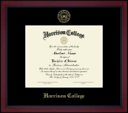 Gold Embossed Academy Frame in Academy
