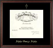Alpha Omega Alpha Honor Society Single Matted Embossed Frame in Studio