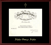 Alpha Omega Alpha Honor Society Single Matted Embossed Frame in Camby