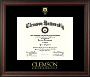 Shield Gold Embossed Diploma Frame in Studio