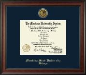 Gold Engraved Medallion Diploma Frame in Studio