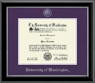 Pewter Masterpiece Medallion Diploma Frame in Onyx Silver