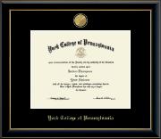 23 Medallion Diploma Frame in Onyx Gold