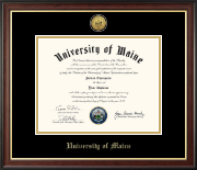 Gold Engraved Medallion Diploma Frame in Studio Gold