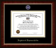 Registered Representative Masterpiece Medallion Certificate Frame in Murano