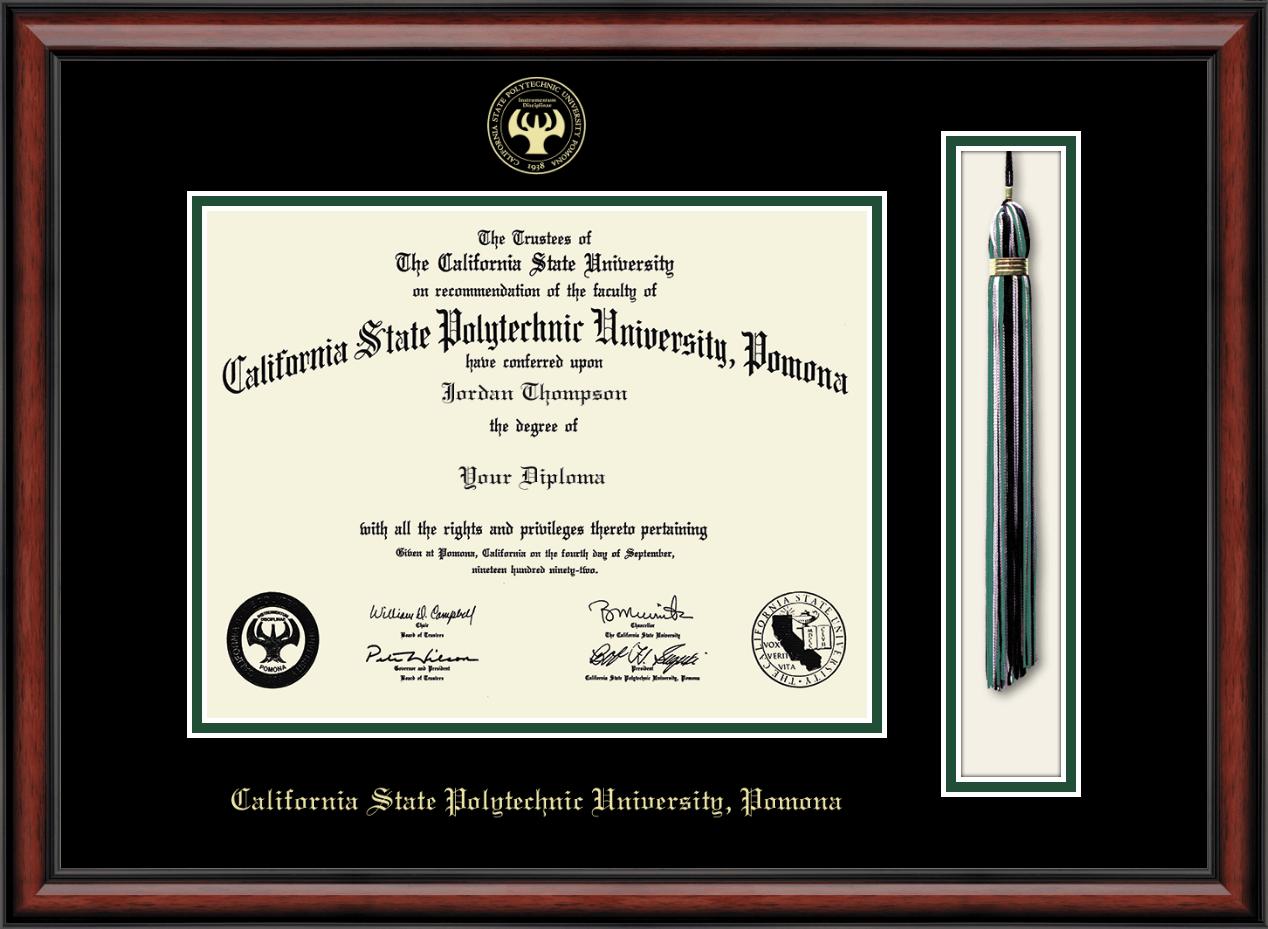 California State Polytechnic University Pomona Tassel Edition Diploma Frame In Southport Item 259438