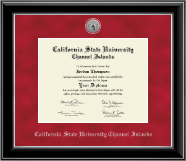 Silver Engraved Medallion Diploma Frame in Onyx Silver