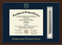 Tassel Edition Diploma Frame in Delta