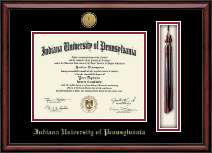 Gold Engraved Tassel Edition Diploma Frame in Southport