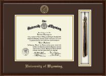 University of Wyoming Tassel Edition Diploma Frame in Delta