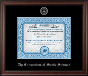 Silver Embossed Diploma Frame in Studio