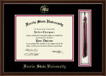 Ferris State University Tassel Edition Diploma Frame in Delta