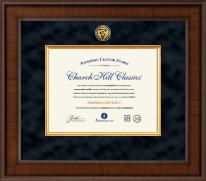 Presidential Veterinary Certificate Frame in Madison