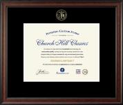 Embossed Licensed Practical Nurse Certificate Frame in Studio
