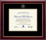 Embossed Licensed Practical Nurse Certificate Frame in Gallery