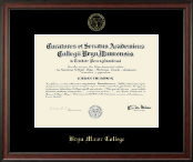 Gold Embossed Diploma Frame in Studio