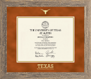 Gold Embossed Longhorn Diploma Frame in Barnwood Gray
