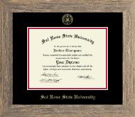 Gold Embossed Diploma Frame in Barnwood Gray