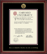 Gold Engraved Medallion Diploma Frame in Kensington Gold