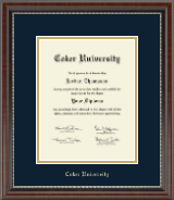 Coker University Gold Embossed Diploma Frame in Chateau