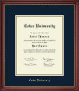 Coker University Gold Embossed Diploma Frame in Kensington Gold