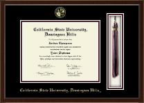 California State University Dominguez Hills Tassel Edition Diploma Frame in Delta