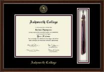 Ashworth College Tassel Edition Diploma Frame in Delta