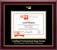 Gold Embossed CPDT-KSA Certificate Frame in Gallery