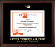 Gold Embossed CPDT-KA Certificate Frame in Studio