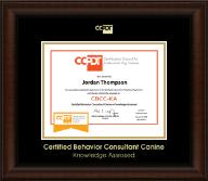 Gold Embossed CBCC-KA Certificate Frame in Lenox