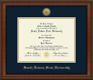 Gold Engraved Medallion Diploma Frame in Austin