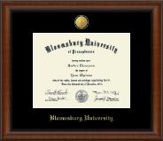 Bloomsburg University 23K Medallion Diploma Frame in Austin