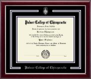 Pewter Spirit Medallion Diploma Frame in Gallery Silver
